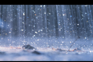 Rain.1